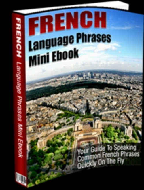 Product picture French Language Phrases Mini E book